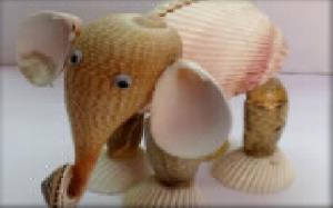 l'éléphant en coquillage