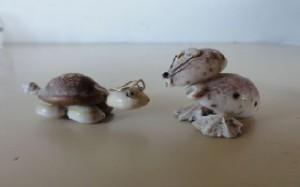 la tortue et le rongeur en coquillage