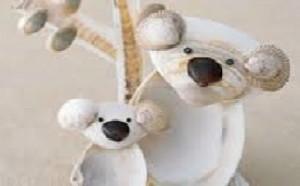 les koalas en coquillage