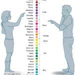 Convertisseur de couleur HOMME / FEMME