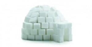 igloo fait avec des morceaux de sucre