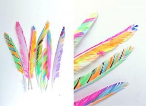 Colorier sur des plumes